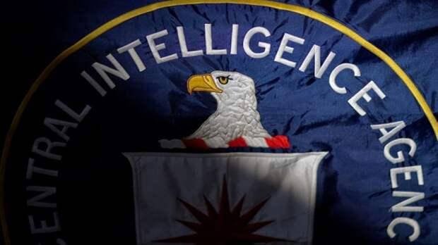 Эксперт прокомментировал план вмешательства США в выборы в России