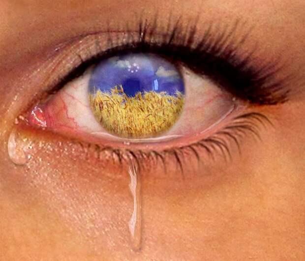 Украинские слёзы