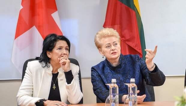 В Вильнюсе встретились две жертвы «гибридных угроз»