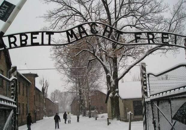 В Освенциме не приняли совместную выставку музея Победы и центра «Холокост»