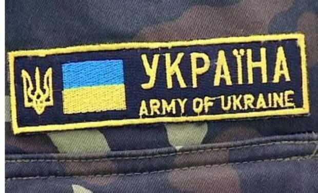 Инцидент с российской картошкой в ВСУ вызвал бурную реакцию украинцев