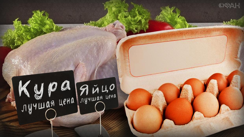 Экономист Хазин оценил обещание остановить в России рост цен на яйца и курятину