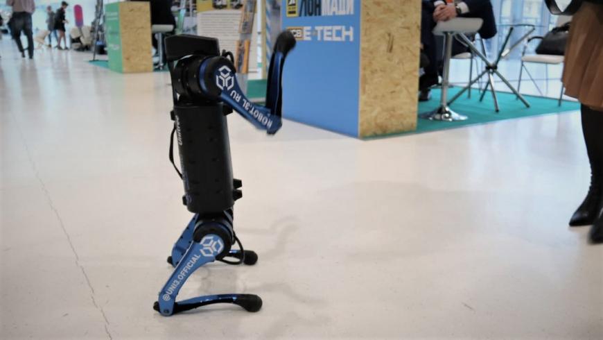 Киберпанк не хуже Boston Dynamics: собаки-роботы Белка и Стрелка готовятся покорять Россию