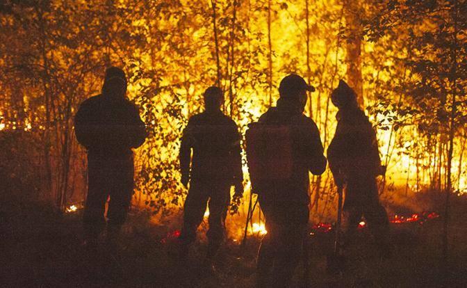 Президент выделил миллиарды на борьбу с лесными пожарами. Поможет ли это?